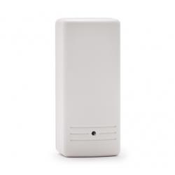 Risco RWX10680000A - Détecteur de choc