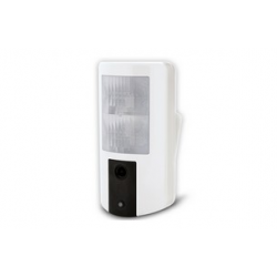 Risco - Remote alarm 4 button