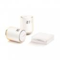 Netatmo NVP-PRO - Kit de démarrage vannes connectées pour radiateurs